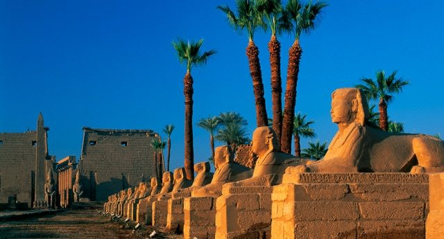 325654366_Avenue of the Sphinxes at Luxor