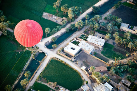 hot-air-balloon-over-luxor-egypt-photo_1433905-fit468x296
